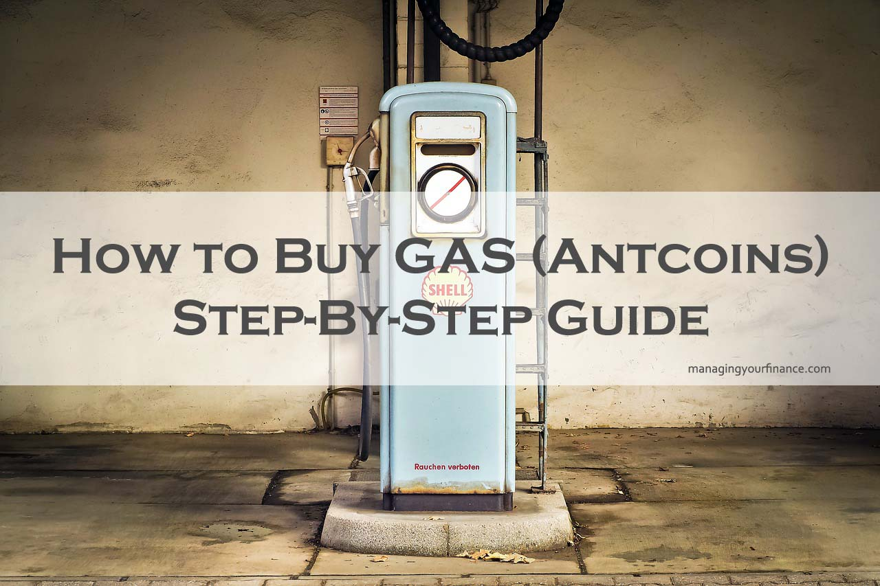 Your Step By Step Guide To The: How To Buy GAS (Antcoins)