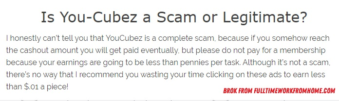 You Cubez Review – Should We Trust Them or Not?